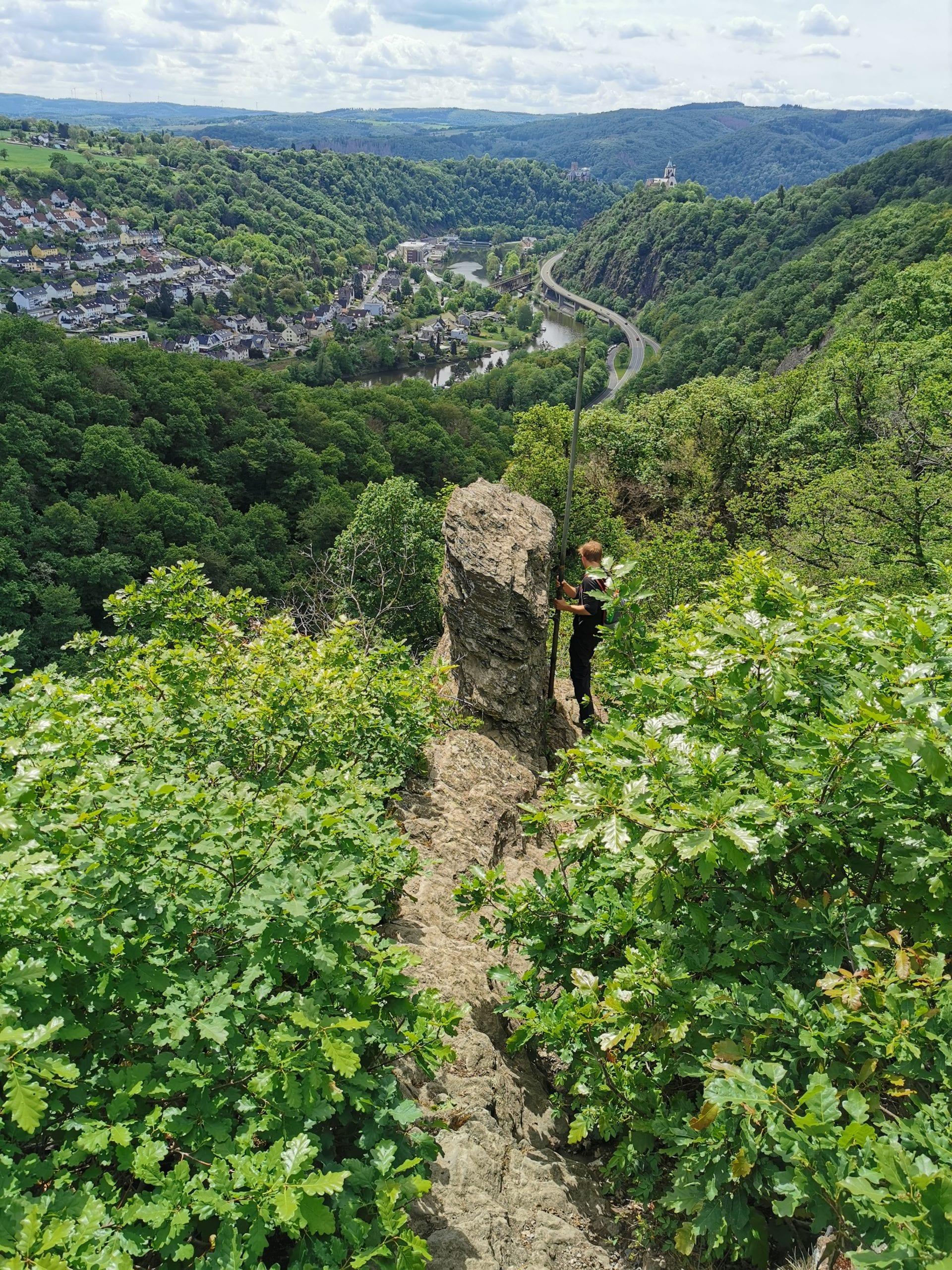 Rheinsteig Weg