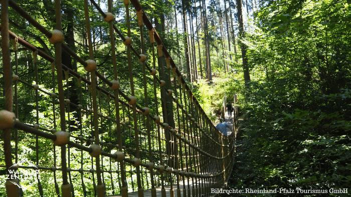 Erlebnispfad Bingen Hängebrücke